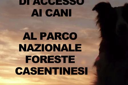 NO al Divieto di Cani Nel Parco Foreste Casentinesi